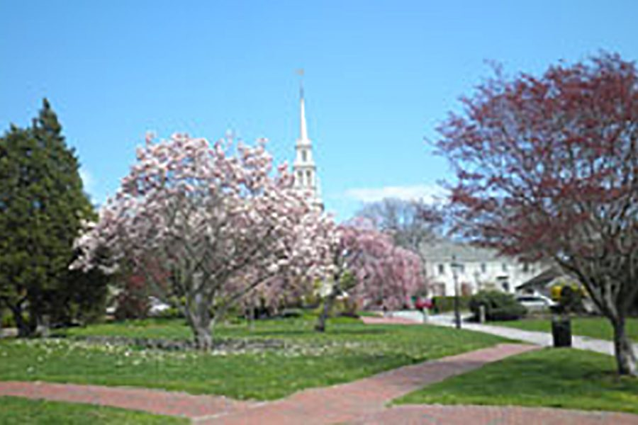 Serene spring day