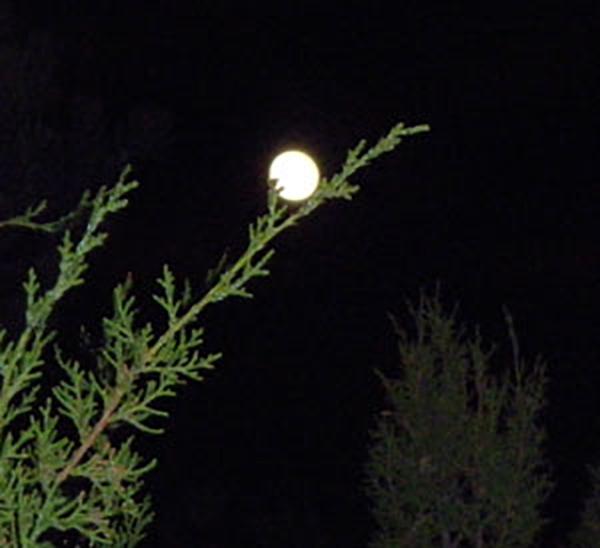 full moon harmony resonance