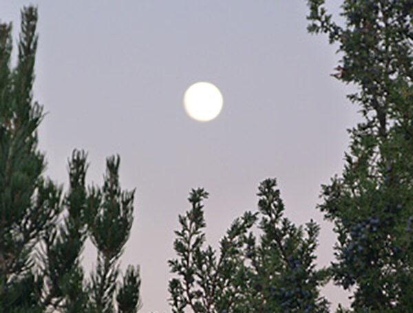 Full moon gratitude