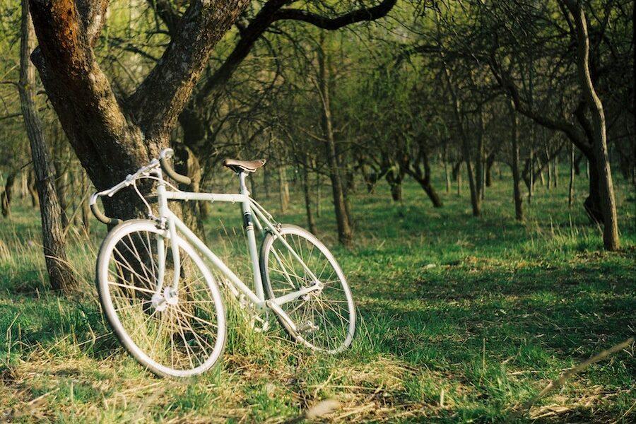 Explore on a bike