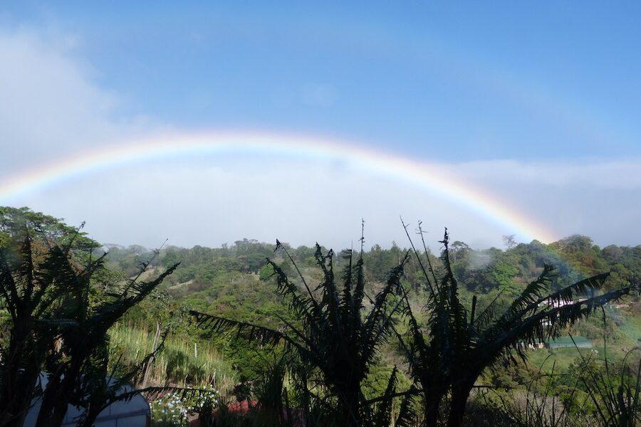 Rainbows remind us of hope