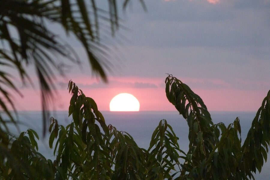 Grateful for the tranquility of a tropical sunset